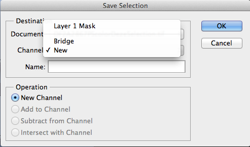 Save as new or overwrite an earlier saved selection