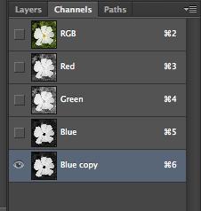 Blue copy