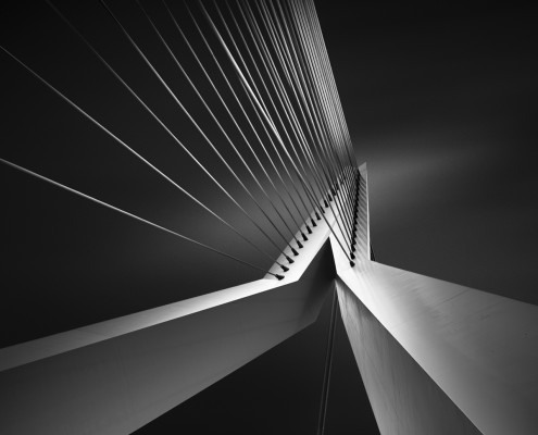 Shape-Of-Light-IV---Erasmus-Bridge