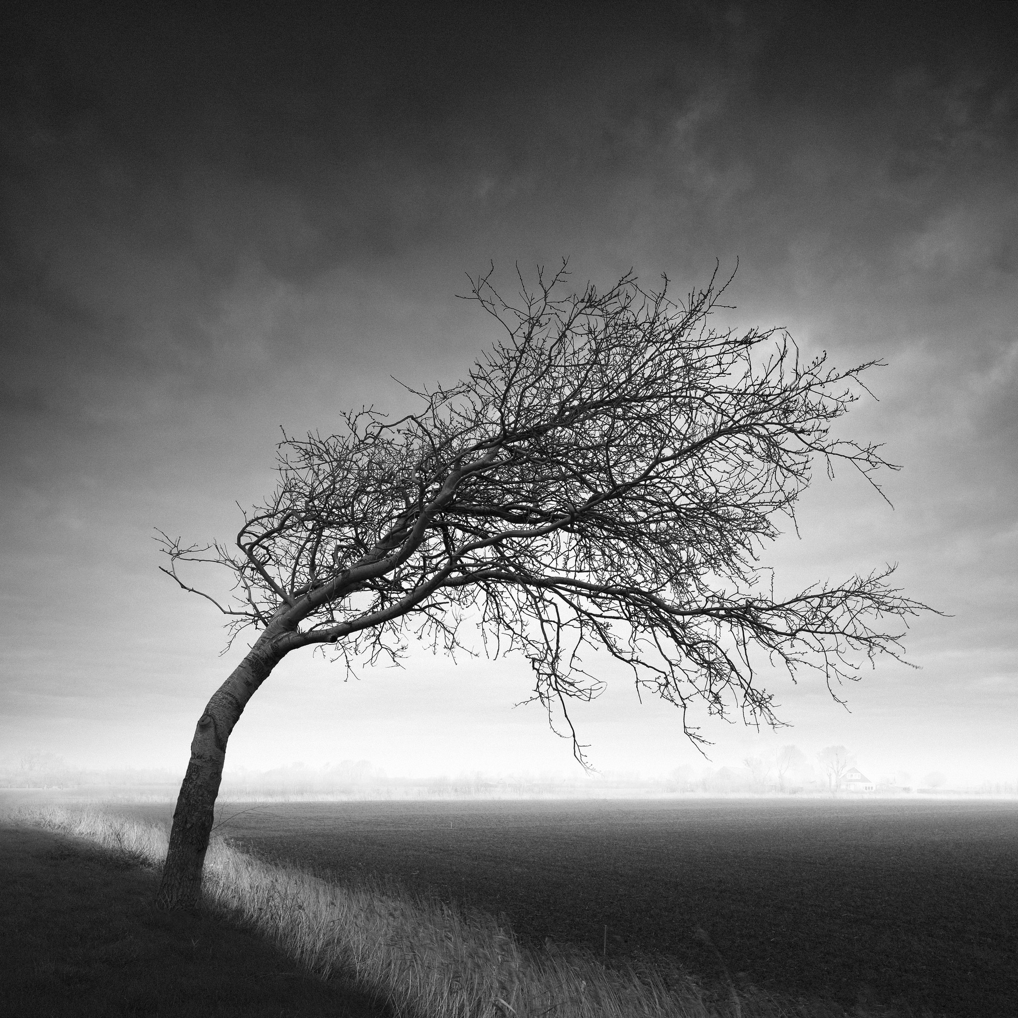 BWVISION – Black and White fine art photography and long ...