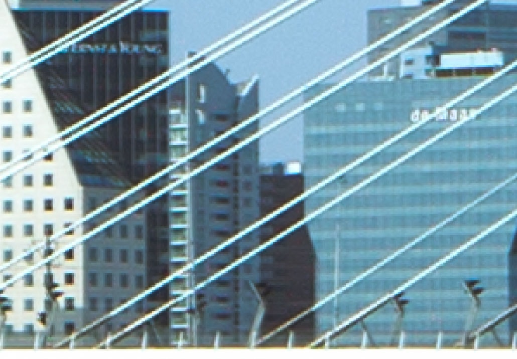 Crop of the Erasmus Bridge Canon 5D