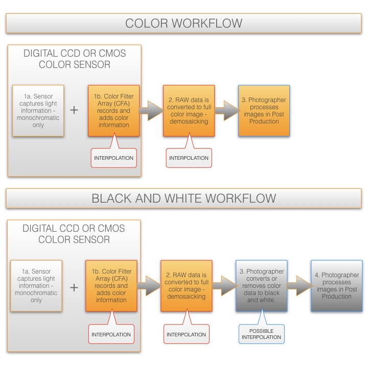 Color workflow vs black and white workflow
