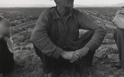 Dorothea Lange Jobless on the Edge of a Peafield