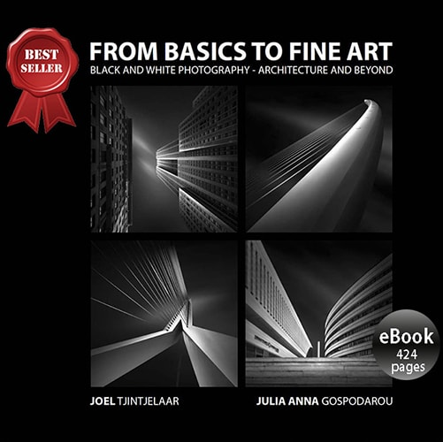From Basics To Fine Art Ebook