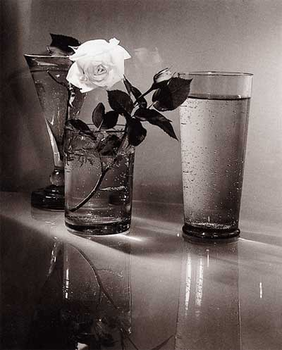 Black And White Still Life Photography