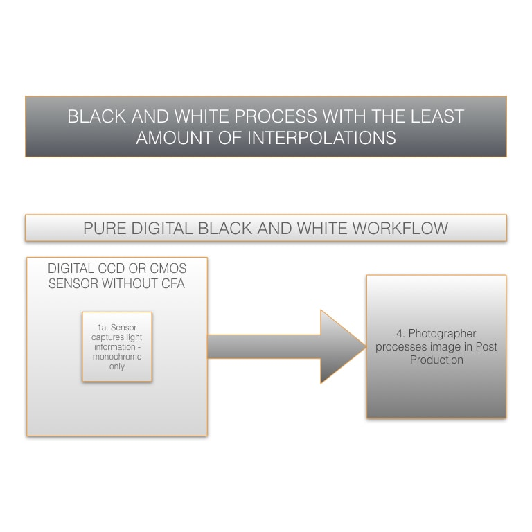 Pure Digital Black and White Workflow