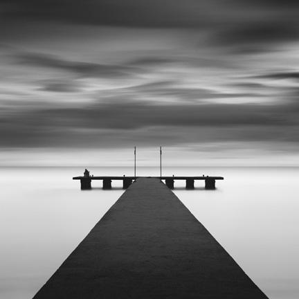 Zebrato By Michael Levin