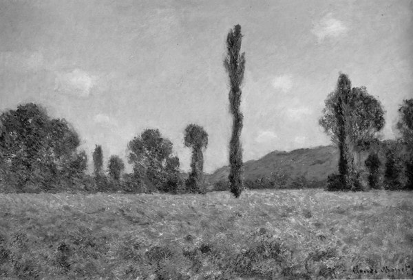 Claude Monet Poppy Field Black and White