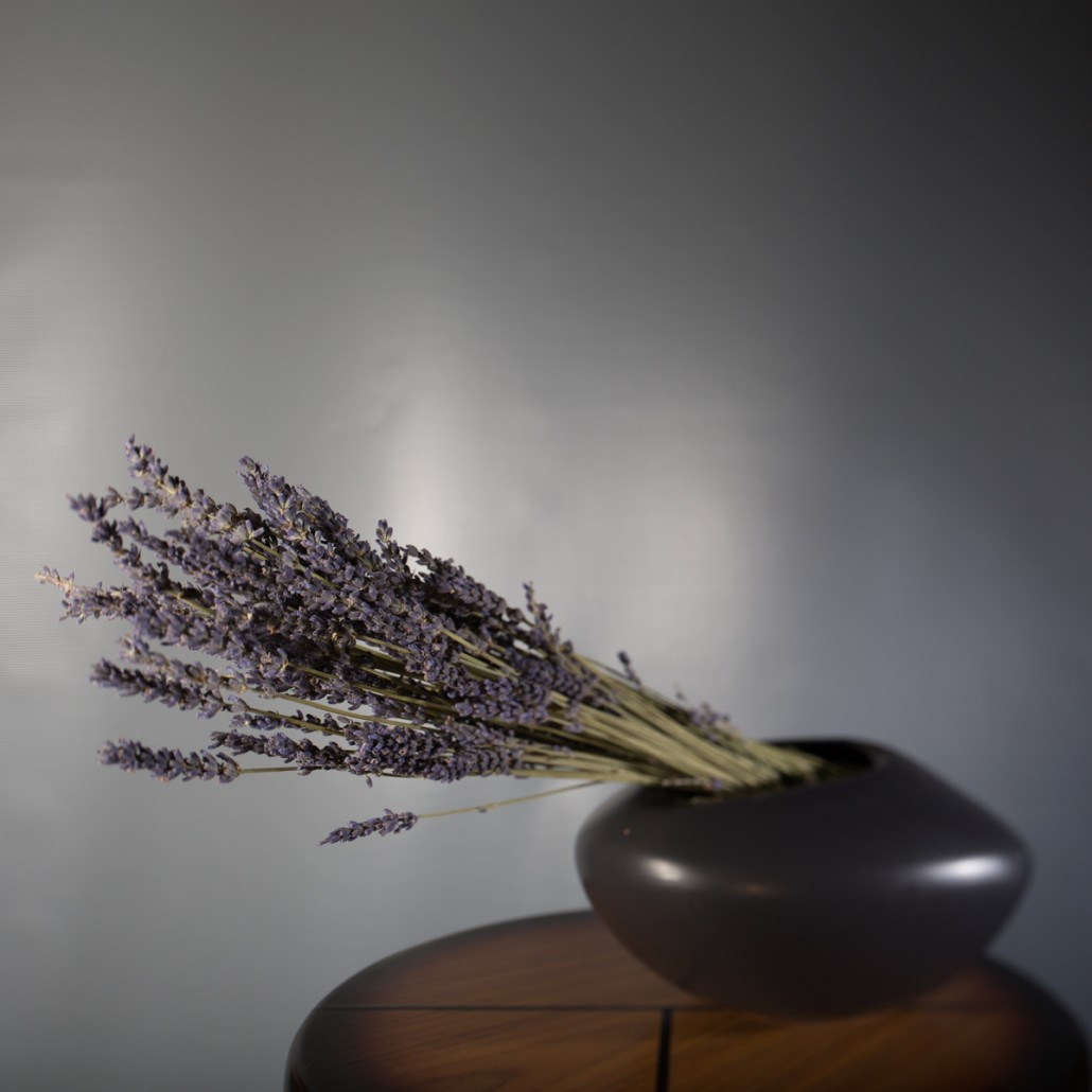still life floral photograph with tilt shift lens with selective focus