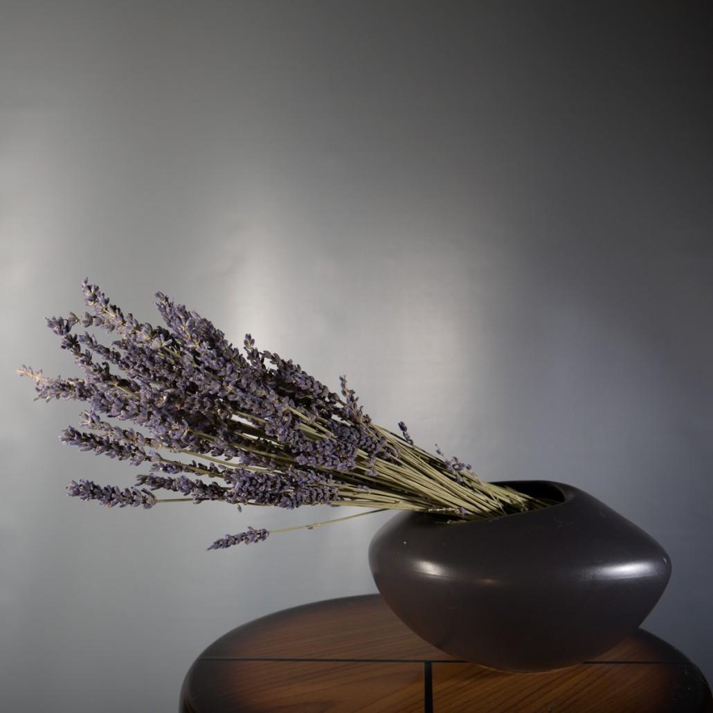 still life floral photograph with tilt shift lens