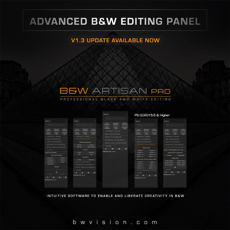 black and white artisan pro panel software for photoshop